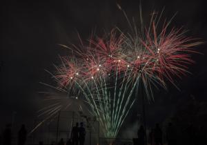 fireworks- 6 14834313014 o