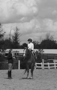 horse-show-photos -14 21004332188 o-min