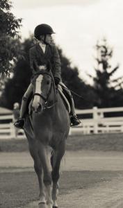 horse-show-photos -24 21165992266 o-min