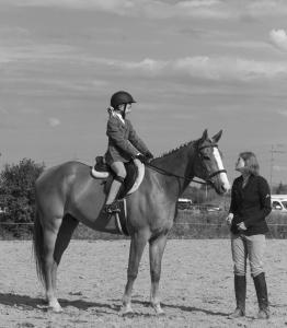 horse-show-photos -42 21200050611 o-min