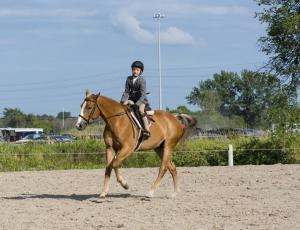 horse-show-photos -43 21004260738 o-min