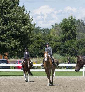 horse-show-photos -5 20569592164 o-min