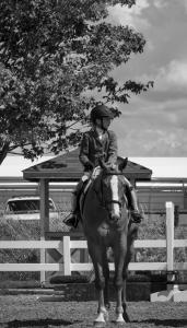 horse-show-photos -8 21200134221 o-min
